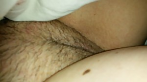 Wife pussy 1
